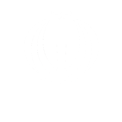 http://www.conference.iramot.ir/wp-content/uploads/2017/05/National-Council-for.png